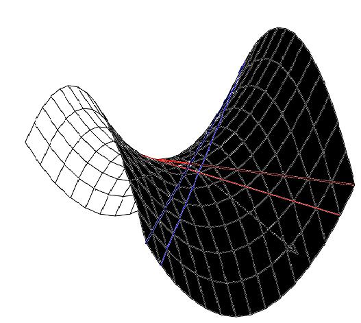Figura 2 - Geometria hiperbólica
